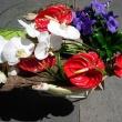 Akácfavirág Virágbolt - István utca