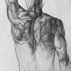 rajz anatómia órán