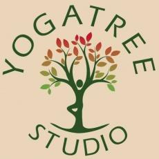 Yogatree Studio